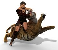 3D Illustration of a Gladiator fighting with a tiger isolated on white background. Gladiator fighting with a tiger 3d illustration isolated on white background Stock Photography