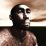 3d Illustration of Homo Erectus Royalty Free Stock Photos