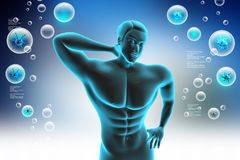 Human body with back pain. 3d illustration of human body with back pain Royalty Free Stock Image