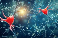 3D Illustration of Human Brain Neurons structure. A high resolution stock illustration