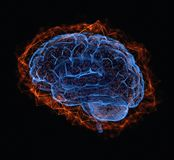 Human Brain Power Connections. 3D illustration. Human brain in a structure of polygonal connections representing the power of the mind Stock Photo