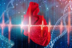3d illustration of human heart and cardiogram on futuristic blue background. Digital technologies in medicine. 3d illustration of human heart and cardiogram with stock photos