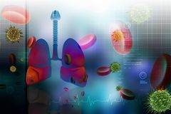 Human lungs with platelets Royalty Free Stock Photo