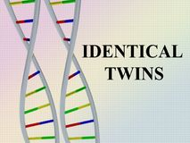 Identical Twins concept Royalty Free Stock Photos