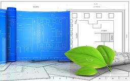 3d with drawing roll. 3d illustration of leafs with drawing roll over blueprint background Stock Photos
