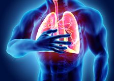 3d illustration of Lungs and chest painful, medical healthcare. Royalty Free Stock Images