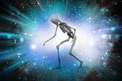 Man Skelton Royalty Free Stock Photo