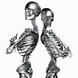 3d illustration of metal skeleton couples isolated on white royalty free illustration