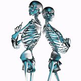 3d illustration of metal skeleton couples isolated on white stock illustration