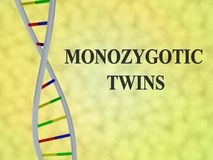 MONOZYGOTIC TWINS concept. 3D illustration of MONOZYGOTIC TWINS script with DNA double helix , isolated on colored background Stock Photo