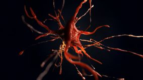 3d illustration of neural cell. Close up of neurone. Science concept Royalty Free Stock Photo