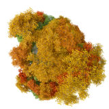 3D illustration of planet with autumn trees Stock Images
