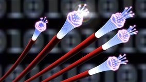 3d illustration of optical fiber cables or fiber optics. 3d illustration of red optical fiber cables or fiber optics on binary background Royalty Free Stock Images
