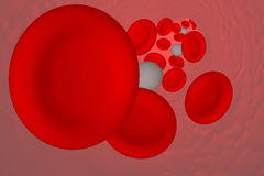3D Illustration: Red and white blood cells. In an artery Stock Images