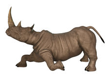 3D Illustration Rhinoceros on White Stock Photography