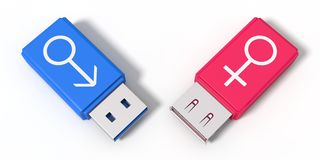 3d illustration of simple usb stick with gender symbols. Stock Photos
