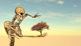 3D illustration of skeleton. Tree and sunset Royalty Free Stock Images