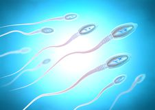 Sperm cells moving to the right towards egg cell. 3d illustration of sperm cells moving to the right towards egg cell Royalty Free Stock Photo