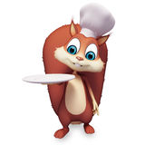 Squirrel is in a chef dress with dish Stock Photos