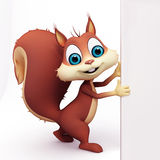 Squirrel is holding a sign on white background Stock Images