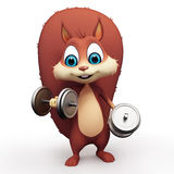 Squirrel lifting weights Royalty Free Stock Photos