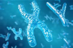 3D illustration XY-chromosomes as a concept for human biology medical symbol gene therapy or microbiology genetics. Research Royalty Free Stock Images