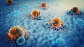 3d illustration of cancer cells and lymphocytes royalty free stock photos