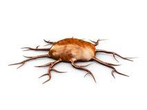 3d ilustracja brown komórka nowotworowa, odizolowywająca na białym tle, Fotografia Royalty Free