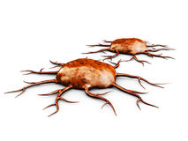 3d ilustracja Dwa komórki nowotworowej, odizolowywająca na białym tle, Obrazy Royalty Free