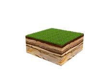 3d ilustracja przekrój poprzeczny ziemia z trawą odizolowywał o ilustracji