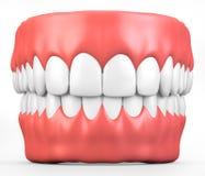 3D ilustracyjni zęby i dziąsło model ilustracji