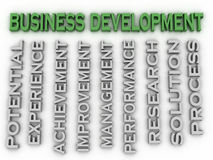 3d image Business development issues concept word cloud backgrou Royalty Free Stock Photo