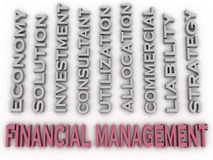 3d image Financial management issues concept word cloud backgrou. Nd Royalty Free Stock Image