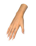 3D image of human hand  on white. Background vector illustration