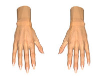 3D image of human hands on white. Background stock illustration