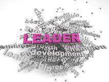 3d image Leader concept word cloud background.  Stock Photo