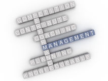 3d image Management  issues concept word cloud background Stock Image