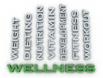 3d image Wellness  issues concept word cloud background Stock Photos