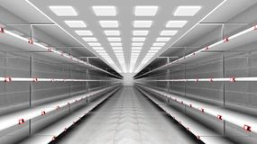 3D interior of supermarket with empty shelves Stock Photos