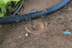 D'irrigation par égouttement de système de fin image courante - Photos stock