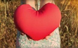 D'isolement deux mains doucement soulevez et tenez le coeur rouge avec amour et le respectez avec le fond de la nature Photographie stock