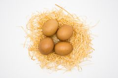 D'isolement quatre oeufs avec le nid images stock