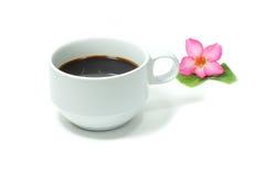 D'isolement sur le fond blanc Cuvette de café blanc Photographie stock libre de droits