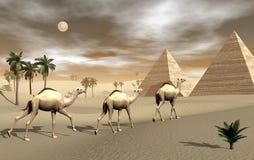 3D kamelen en piramides - geef terug Stock Fotografie