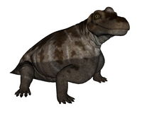 3D Keratocephalusdinosaurus - geef terug Royalty-vrije Stock Fotografie