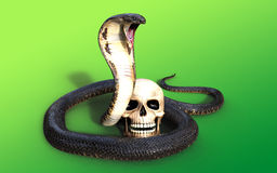 3d King cobra snake attack and skull. On green background Royalty Free Stock Images