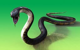 3d King cobra snake  Royalty Free Stock Image