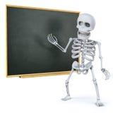 3d kościec uczy przy blackboard Zdjęcie Royalty Free