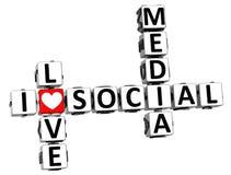 3D Kocham Ogólnospołecznego Medialnego Crossword Obrazy Stock