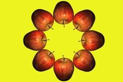 3 d krąg się jabłek Obrazy Stock